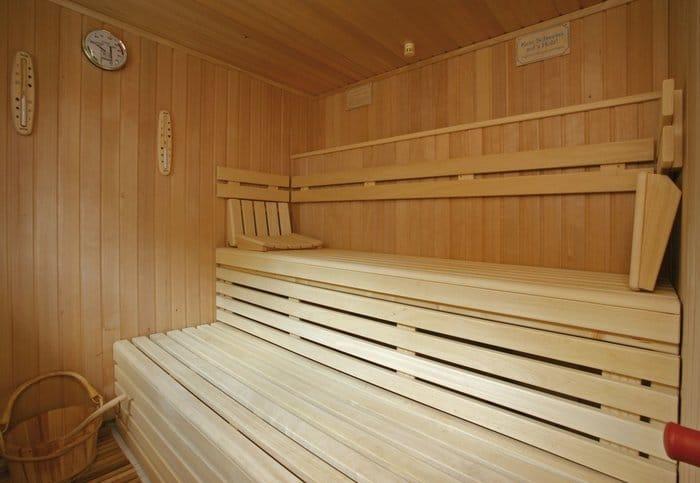 MS VistaFlamenco Sauna