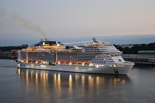 Kreuzfahrtschiffe in Hamburg 2019
