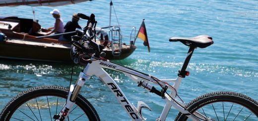 Ab diesem Jahr sind alle Reisen von Boat Bike Tours klimaneutral